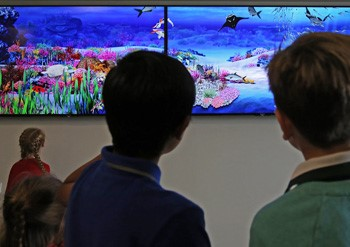 Sony's virtual fishtank at Alder Hey in the Park