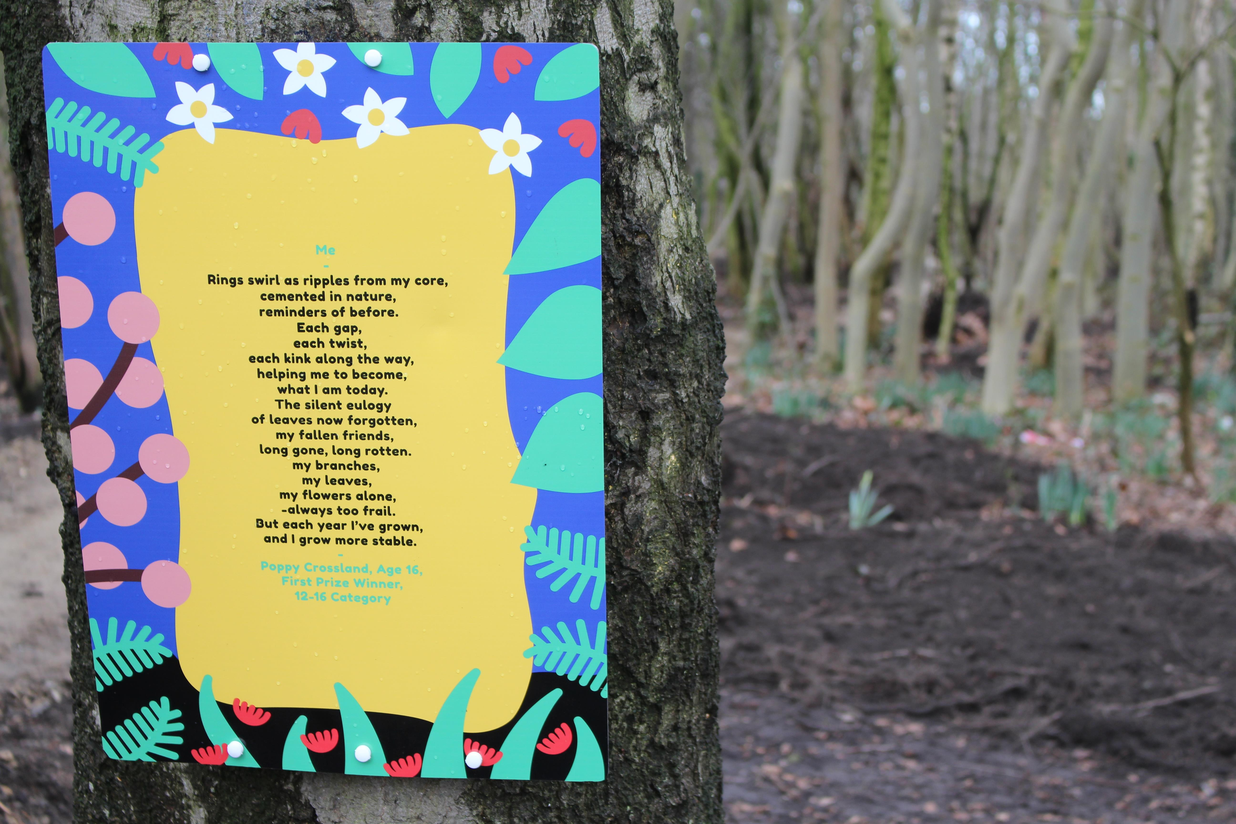 If you go down to the woods…on National Poetry Day!